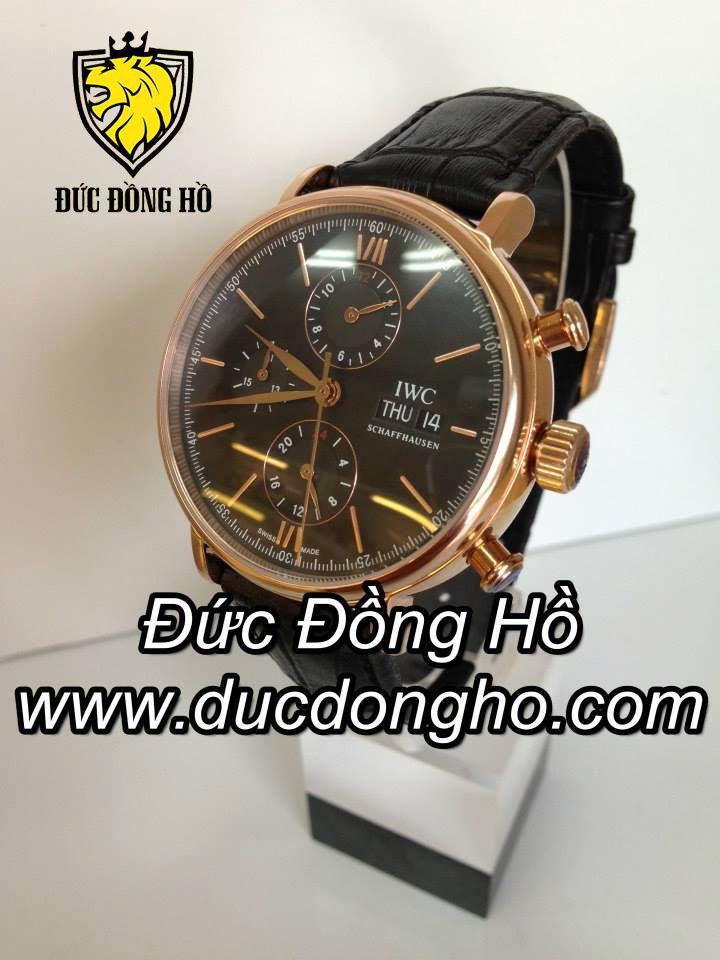 Đồng Hồ IWC Nam 102